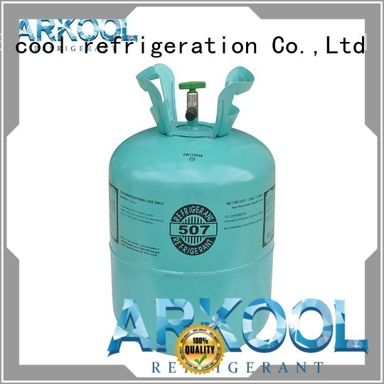 portable substitute for r12 refrigerant wholesale for industry